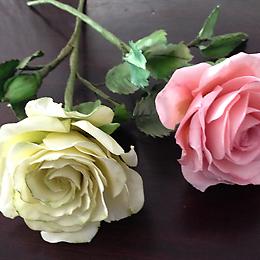 zuckerblumen_gelb_rosa_260px